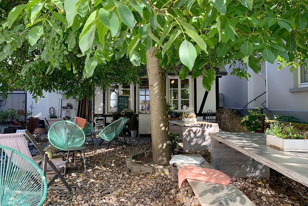 Alter Walnussbaum im idyllischen Innenhof vom Wohncafe Seizoen in Werden