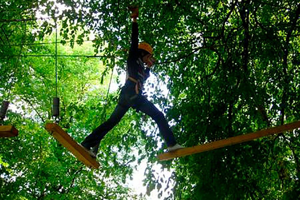 Frau beim Klettern zwischen Bäumen im Hochseilgarten