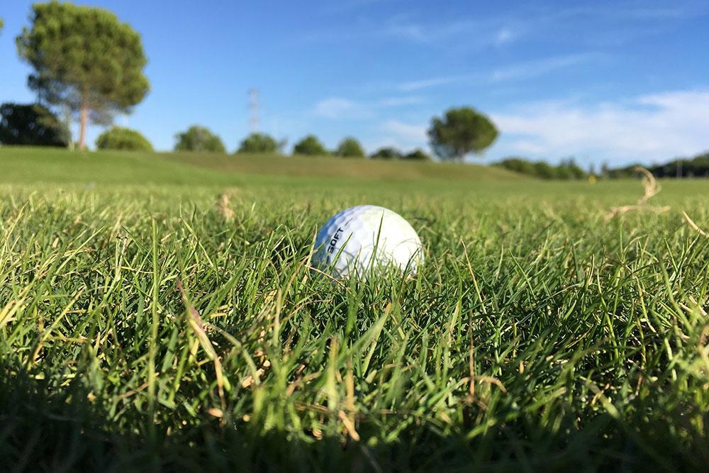 Golfball auf einer gruenen Wiese auf dem Rutherhof in Schuir