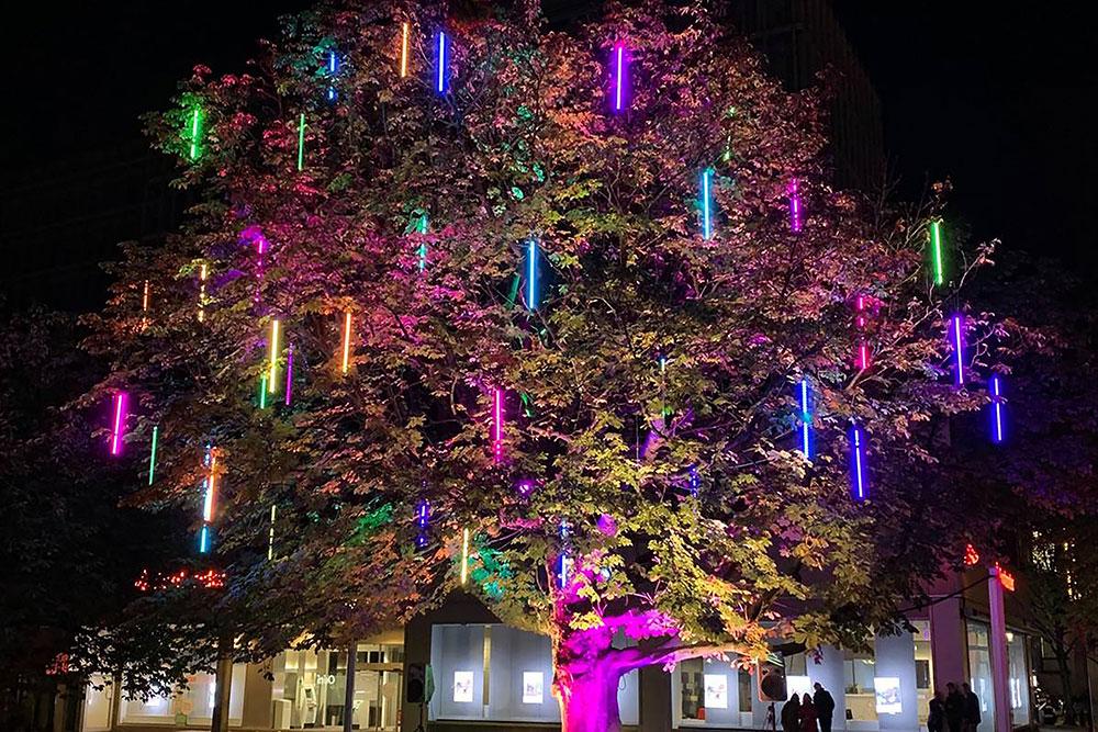 Illuminierter Baum vor Bürogebäude am Flachsmarkt in Essen