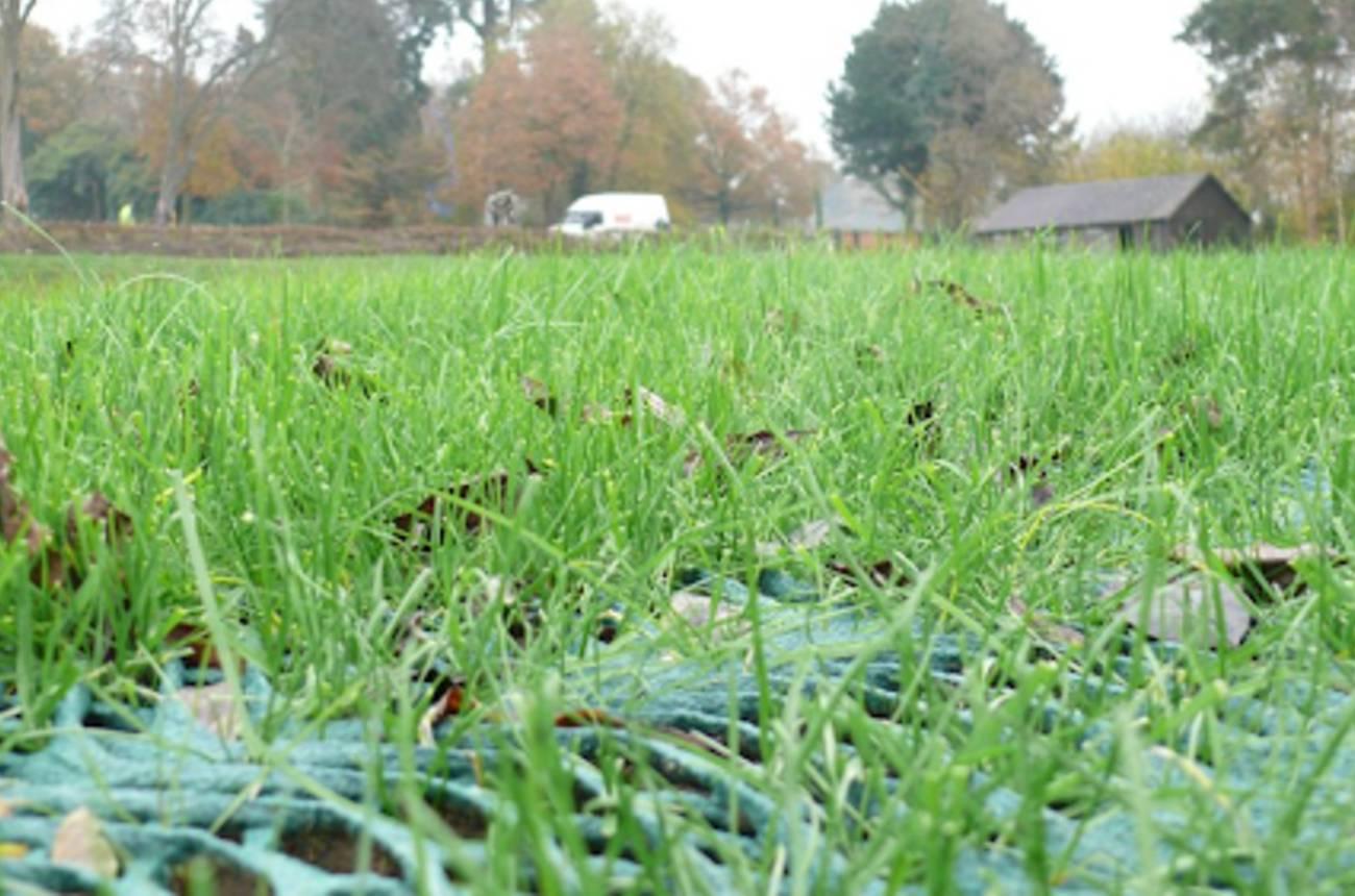 grass-reinforcements-3