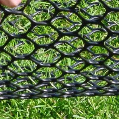grass reinforcements thumbnail