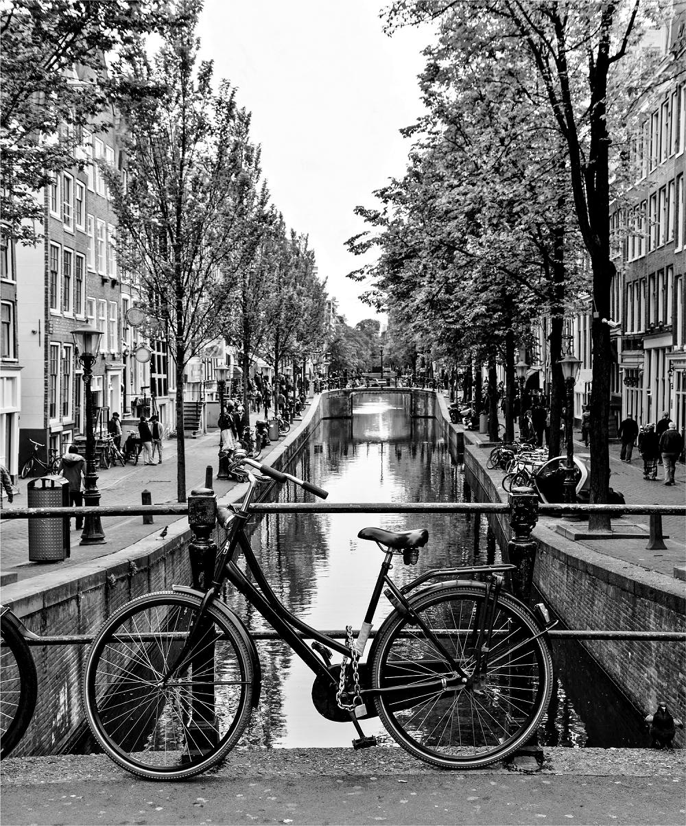 Amsterdam Bike - graphene radiator image