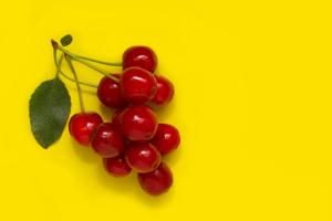 yellow cherry - graphene radiator image
