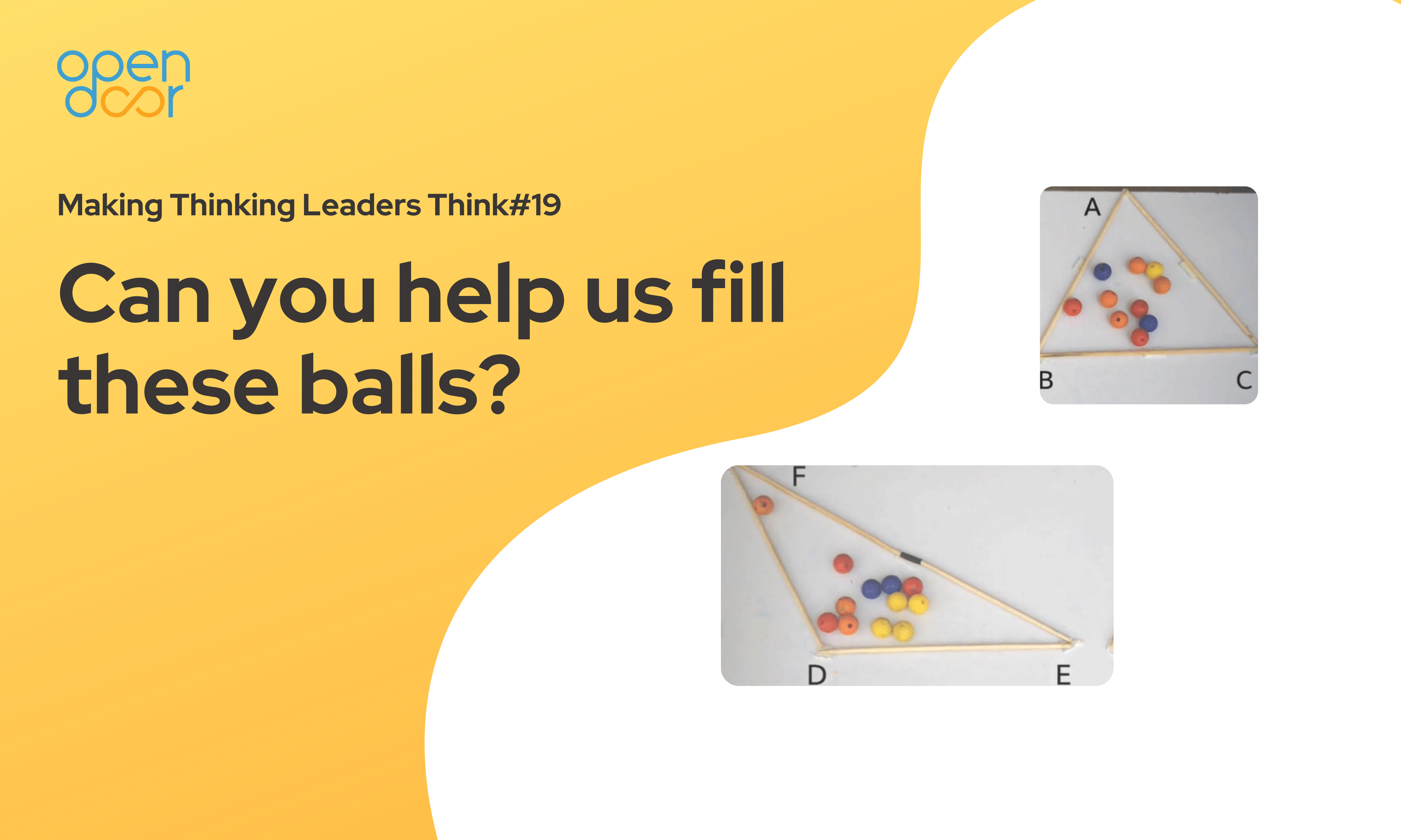 Q#19 Can you help us fill these balls?