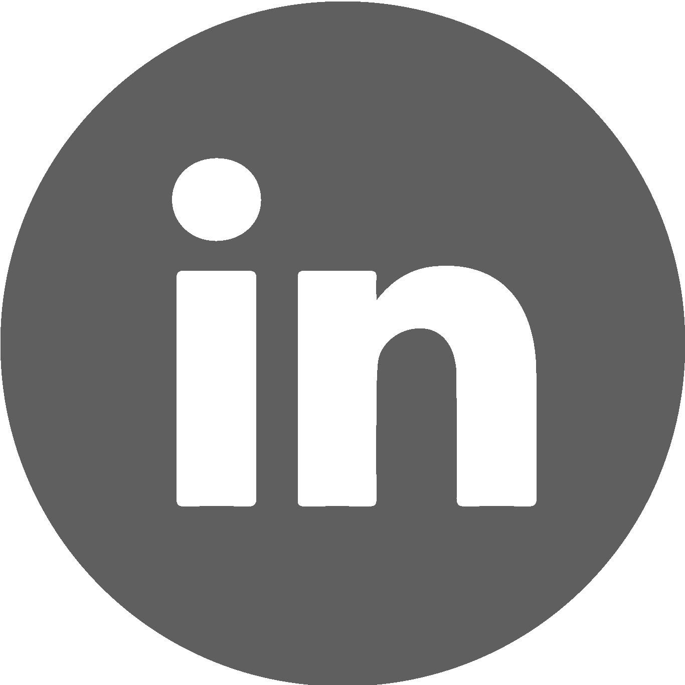 icona logo linkedin