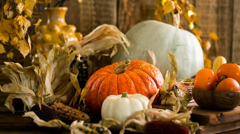 10 Mouthwatering Fall Recipes