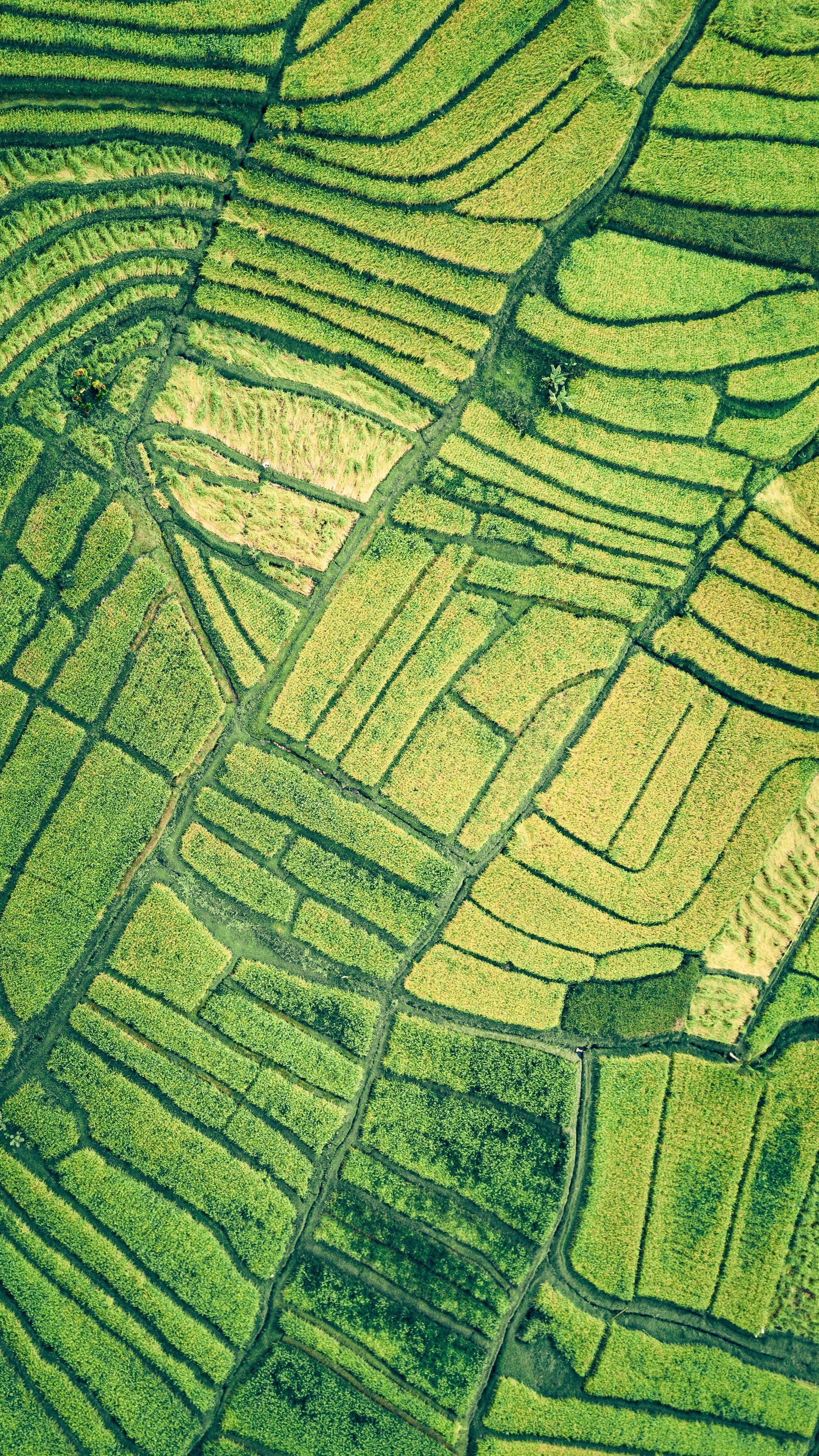 image of land