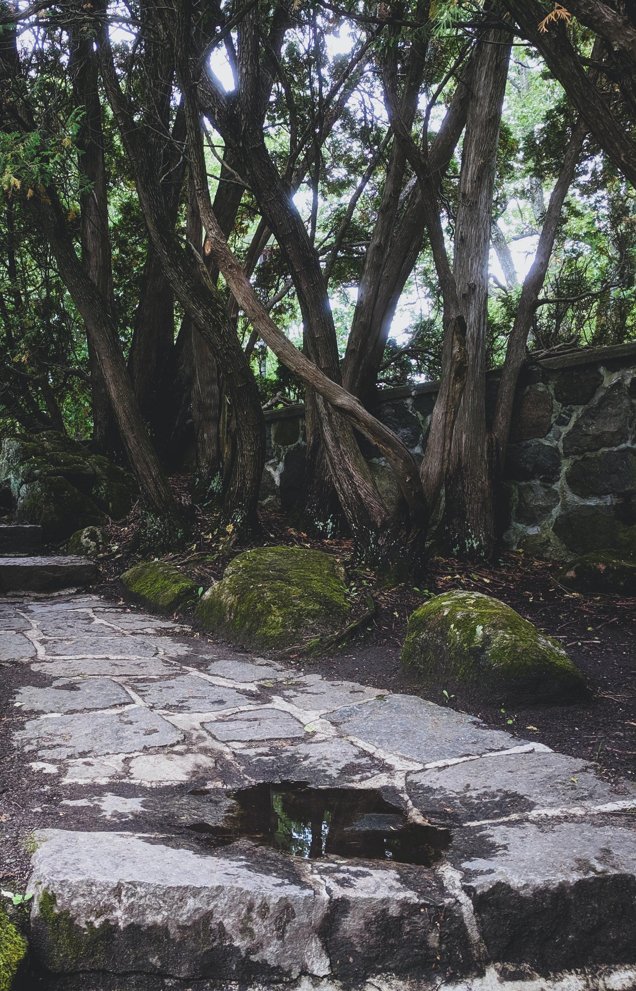 retaining wall on path
