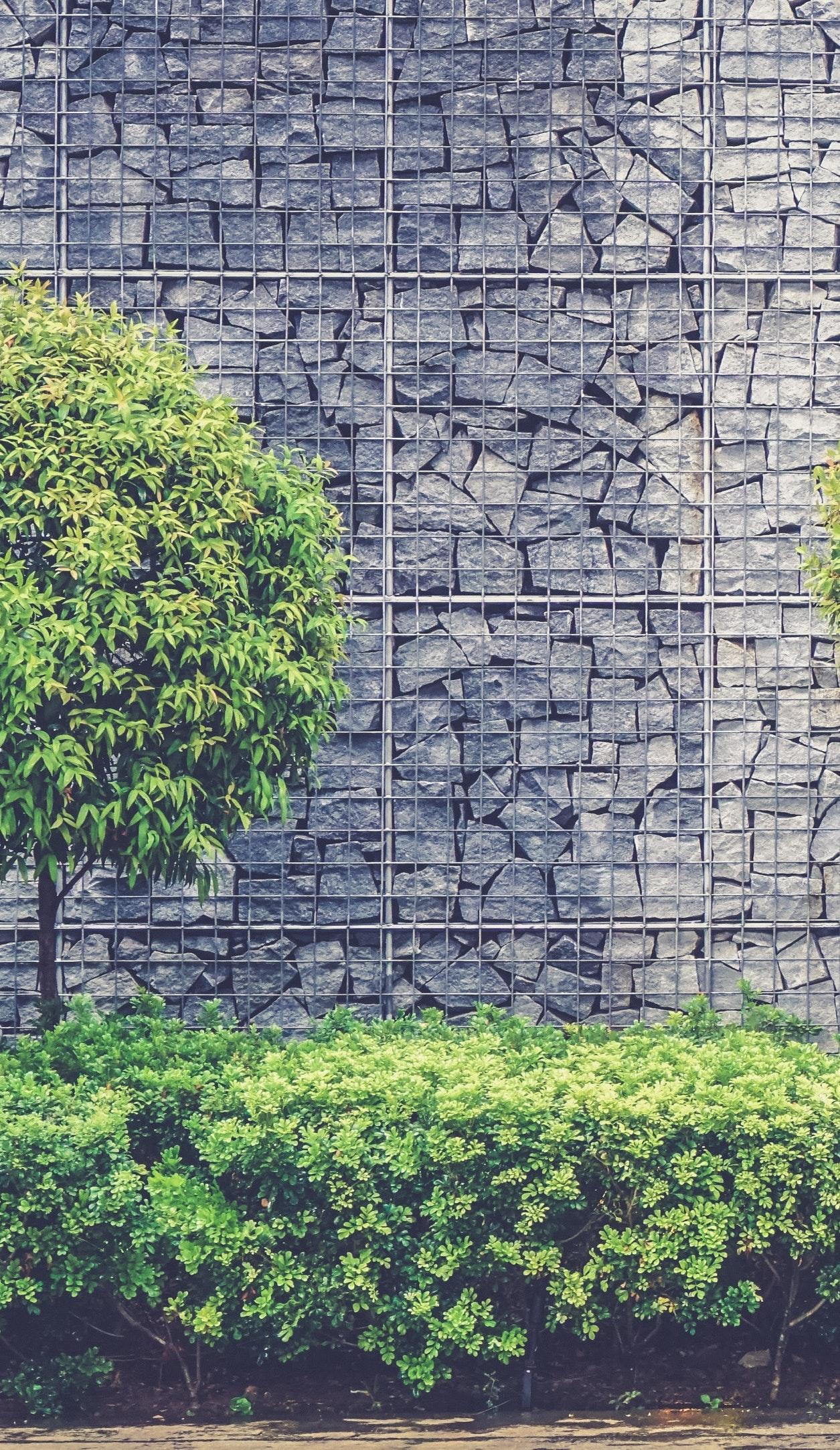 tall retaining wall