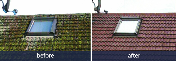 roof before and after.png