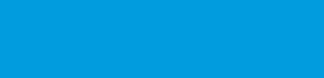 Endor Logo