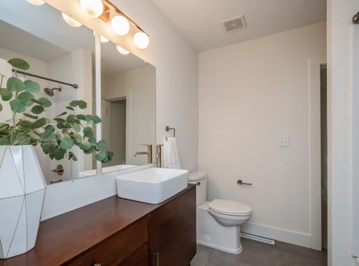 Bathroom Expansions