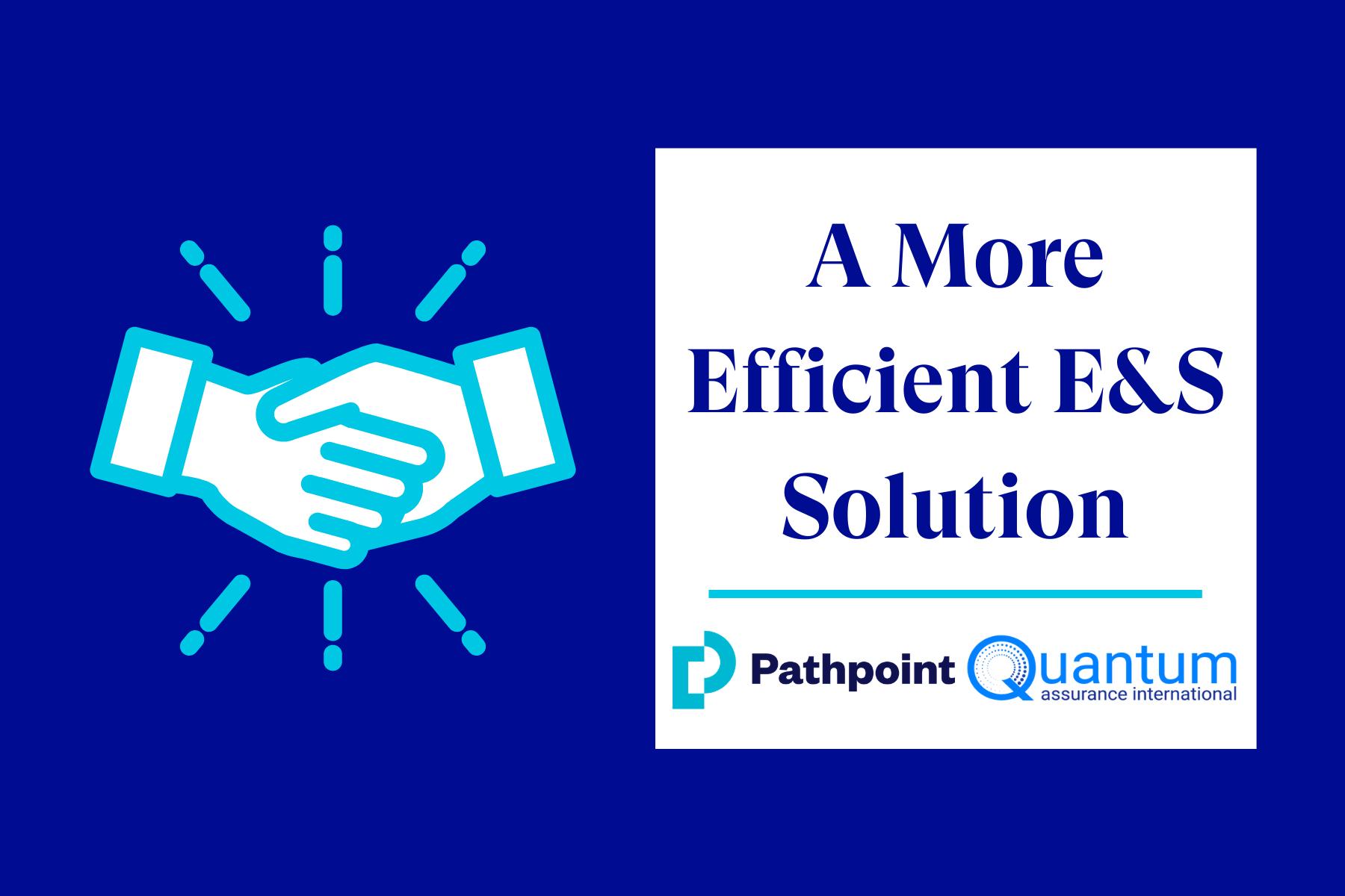 A More Efficient E&S Solution