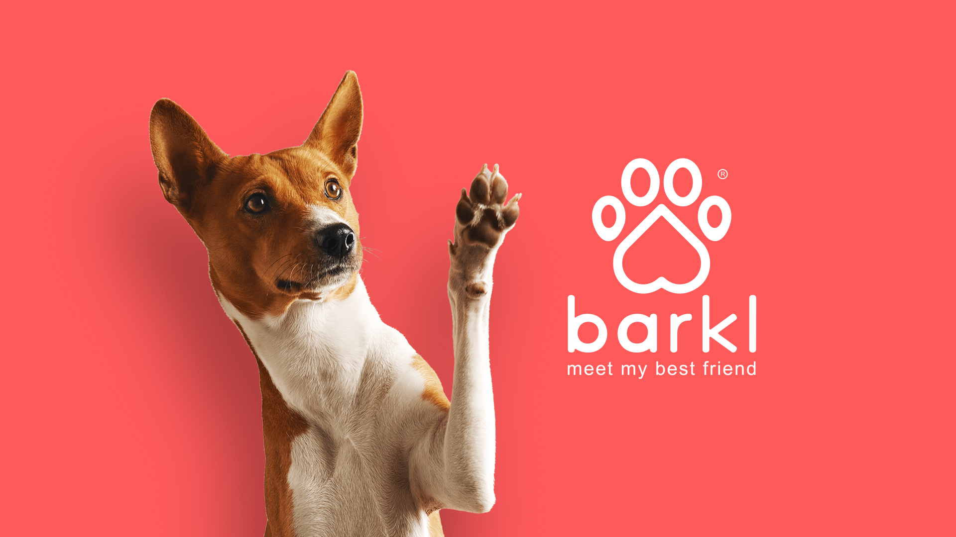 Find fellow dog guardians to connect with and build a lifelong bond with man's best friends.