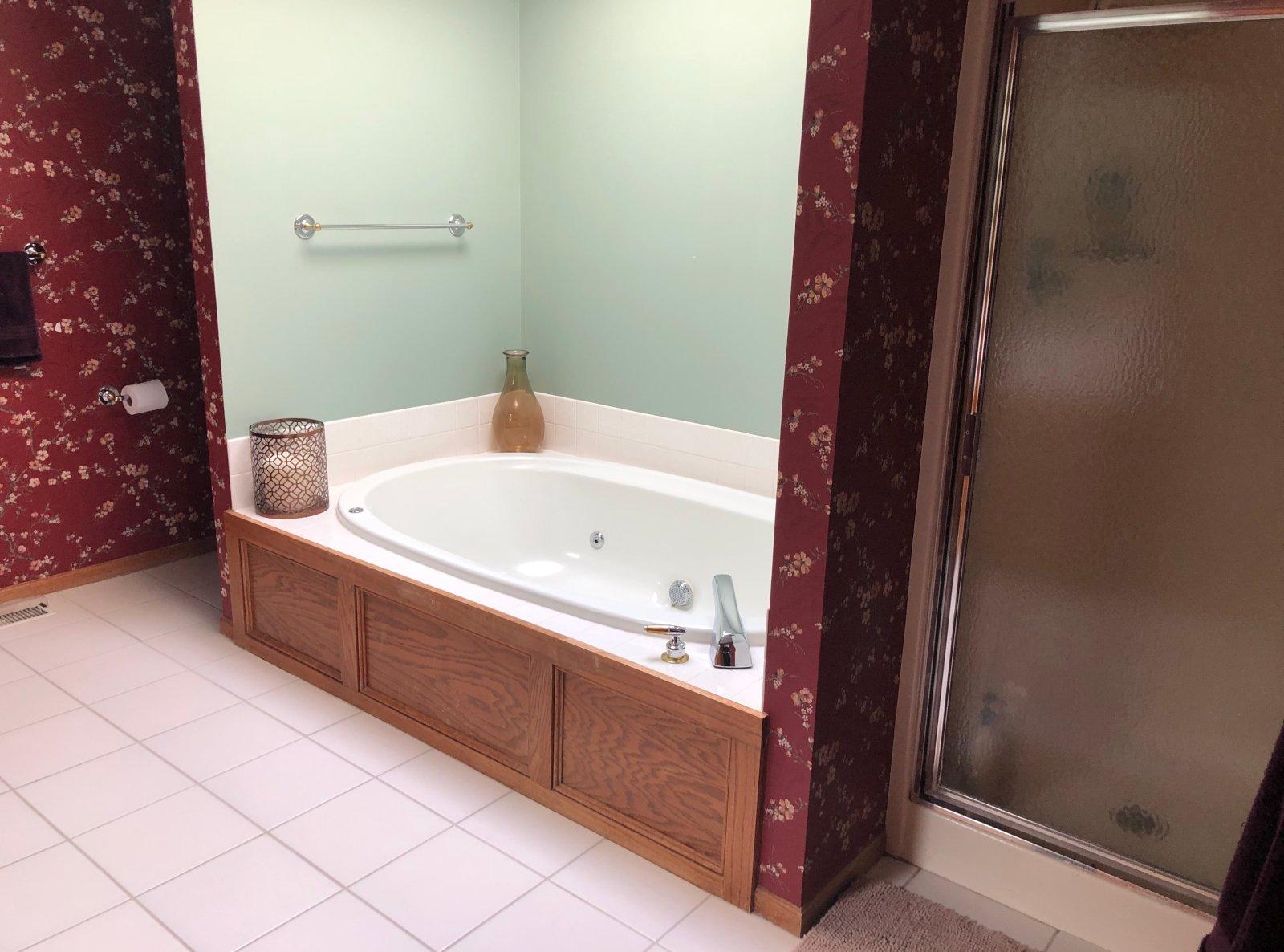 West Des Moines Master Bathroom Refresh (before)
