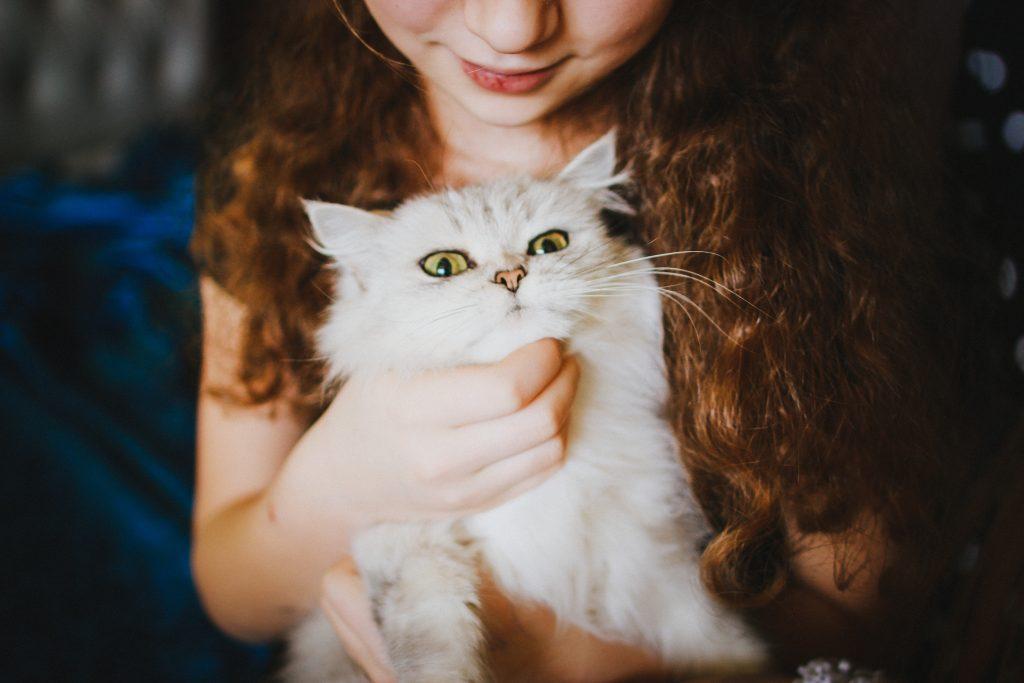 Présenter un nouveau chat à vos enfants