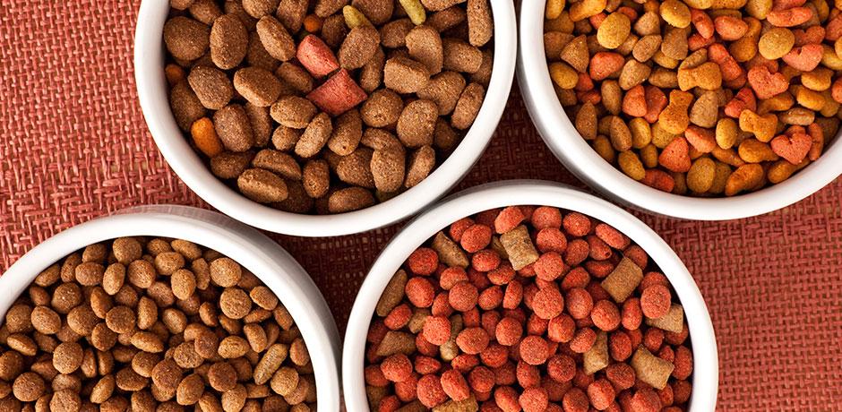 100% des croquettes contiennent un taux élevé de glucides.