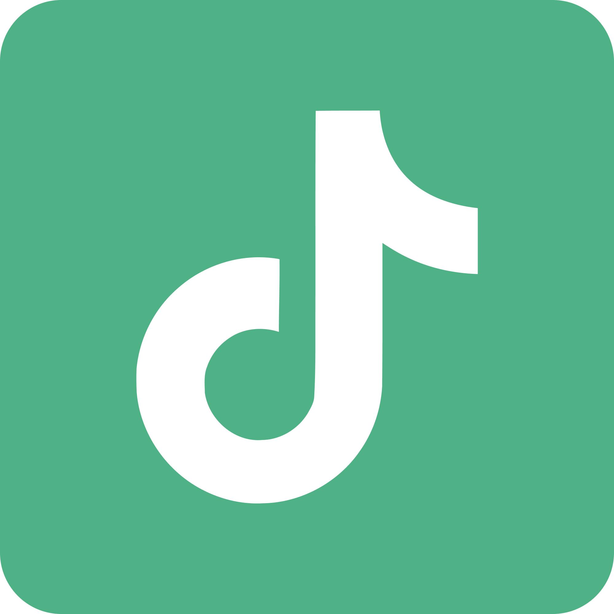 TikTok Logo button