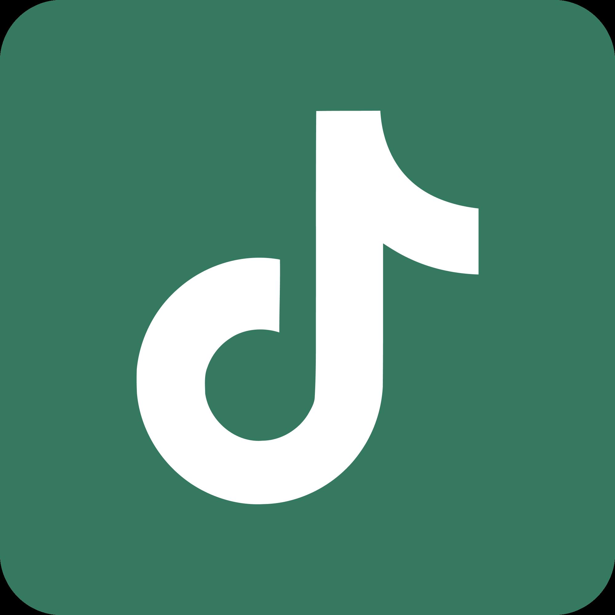 TikTok Link