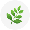 Pretty plant emoji