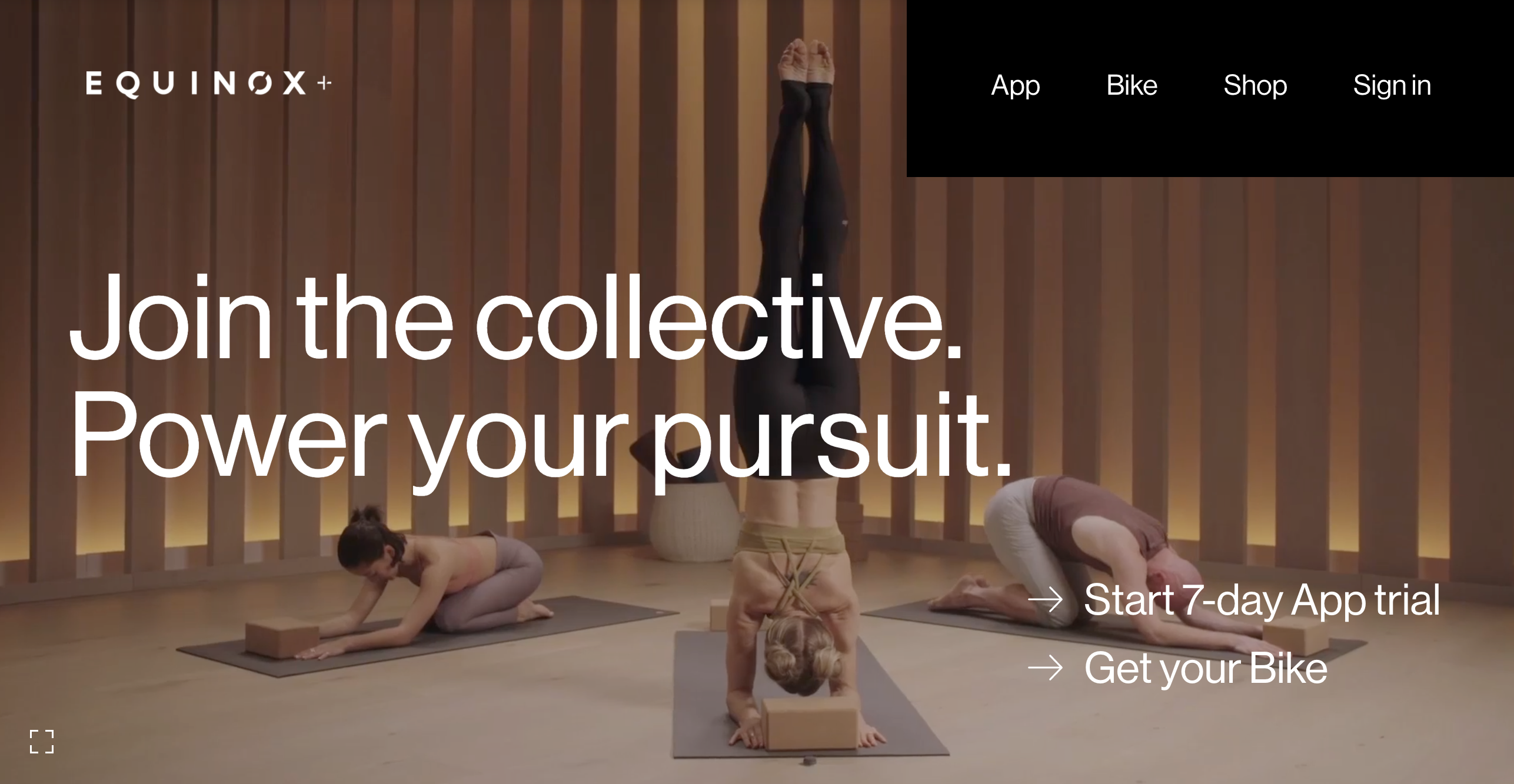 Product and Web Design for a Digital Fitness Collective