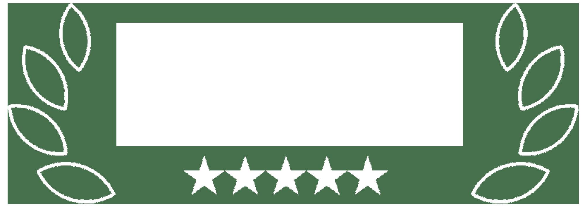 Expert Webflow
