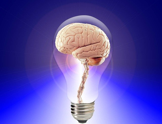 Alt text Prolonged fasting can improve memory.