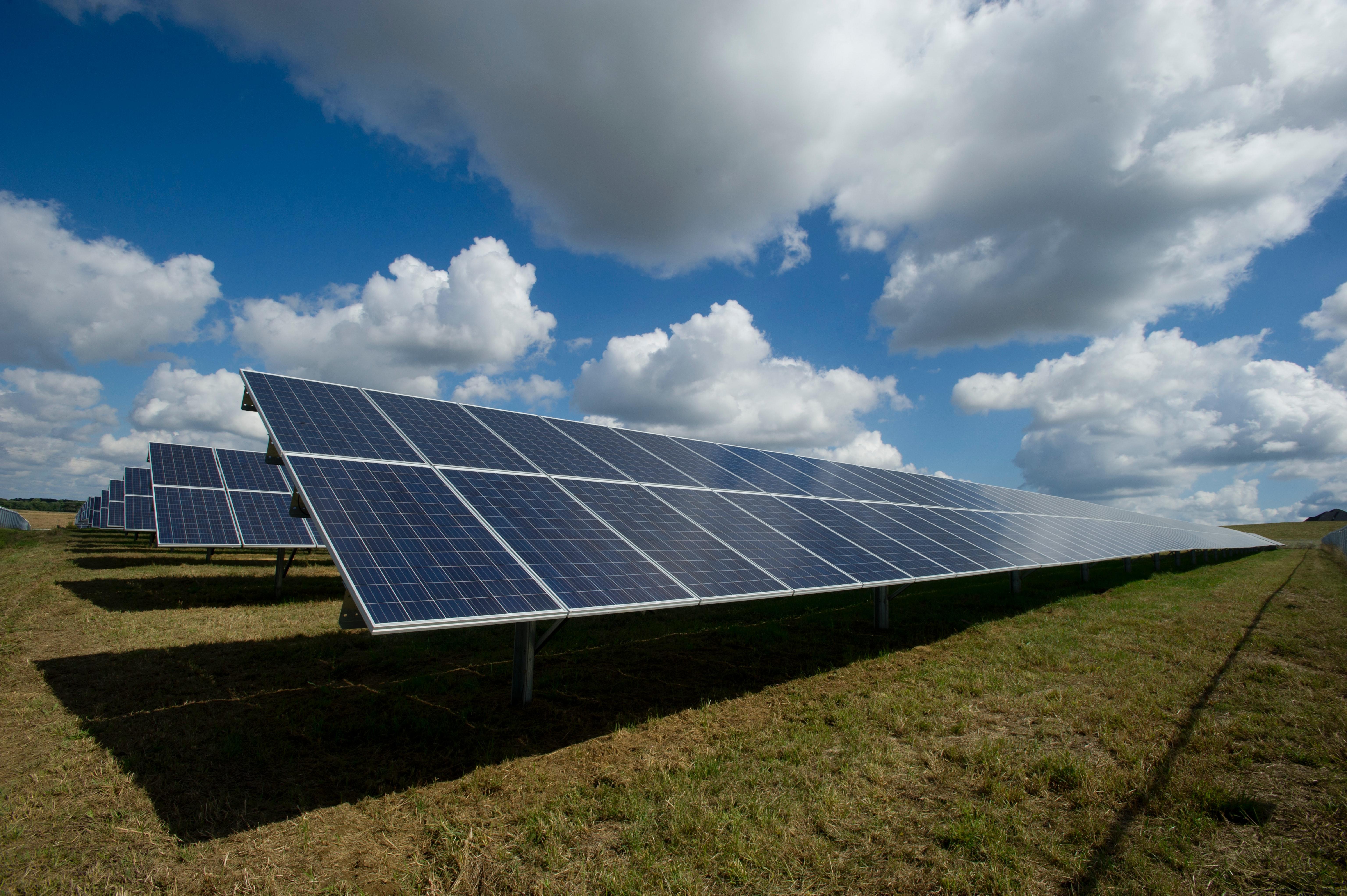Huge filed of solar panels generating alternative energy