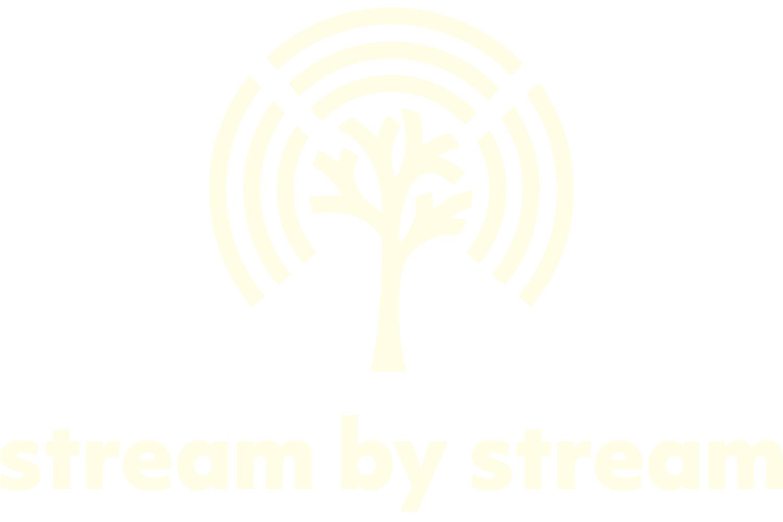 White logo of Stream by Stream