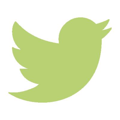 Link button to Twitter (light)