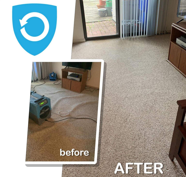 Save carpet on water damage