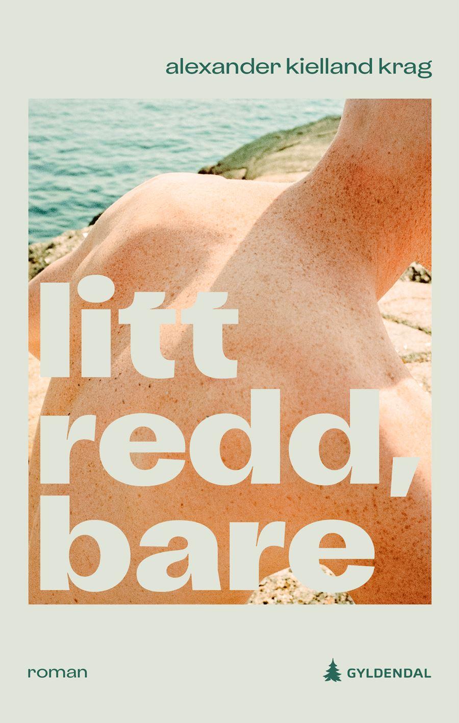 Alexander Kielland Krag's new book Litt Redd, Bare