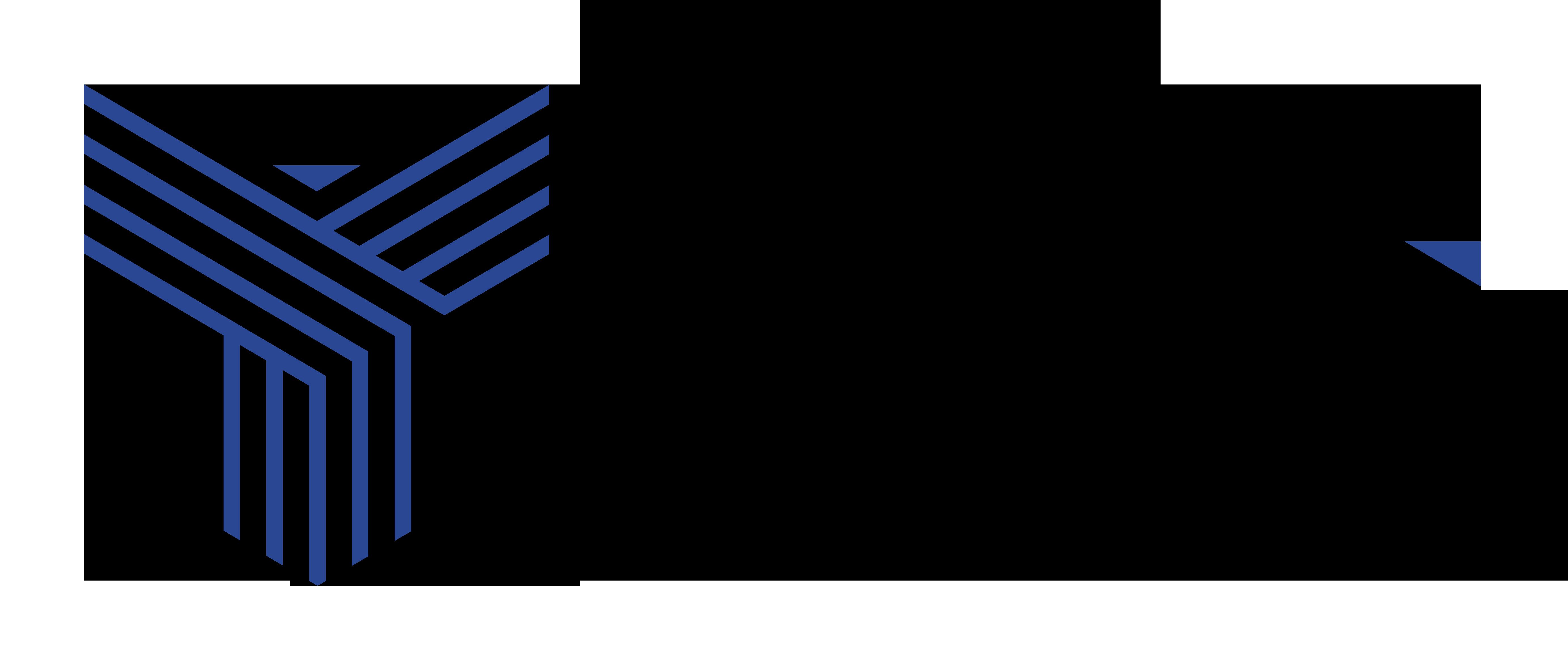 Logo TCG Conseil