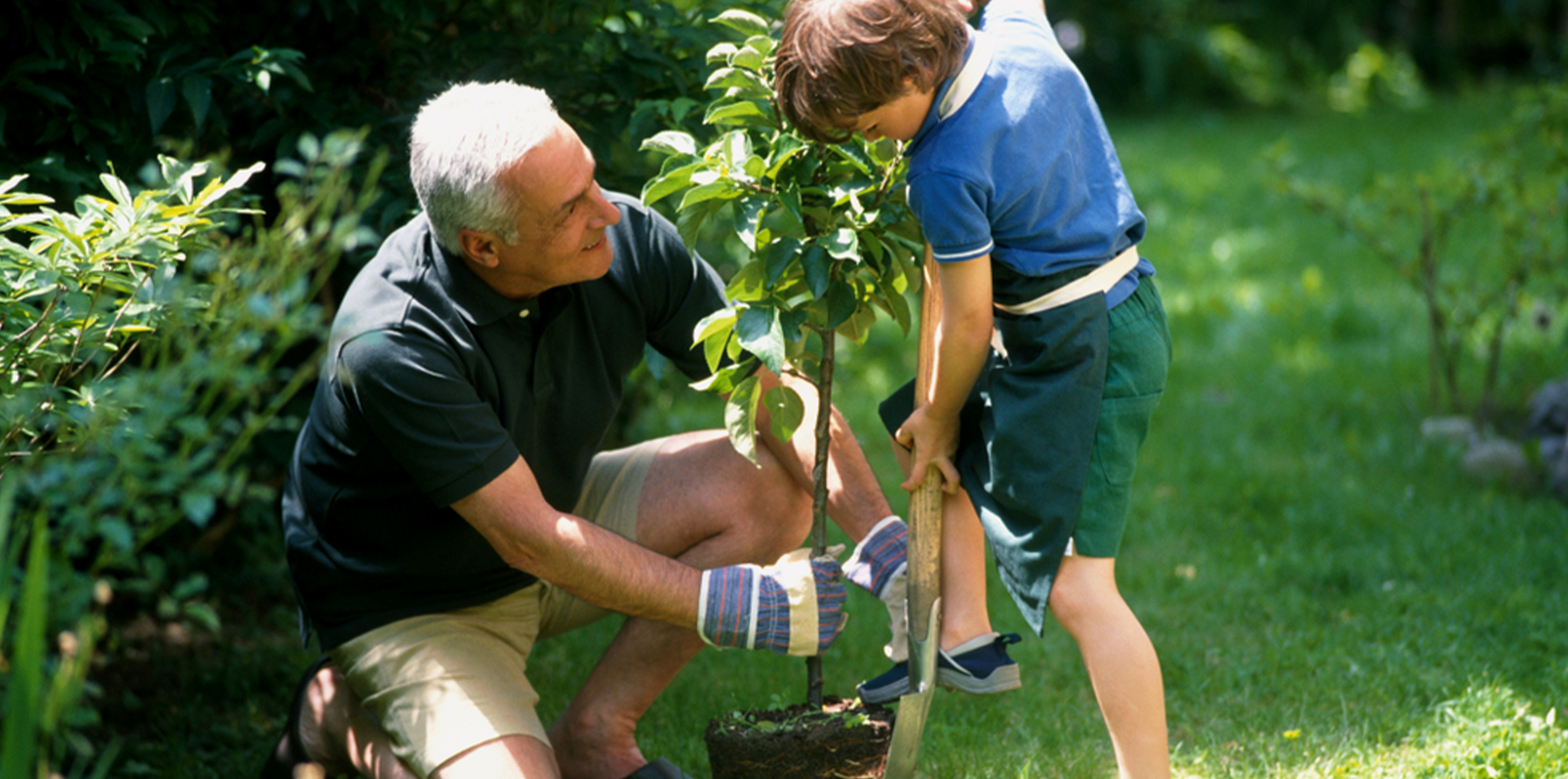 A father and son planting a tree.