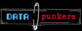 Data Punkers