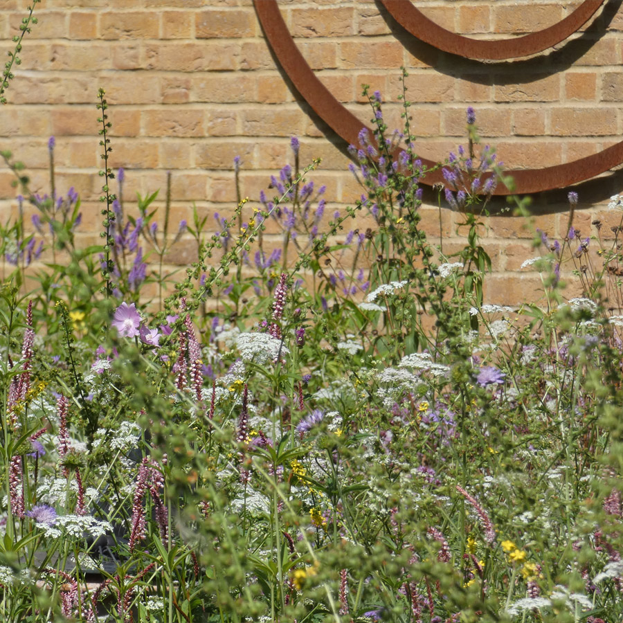 The Butterfly Garden at Waltham Place