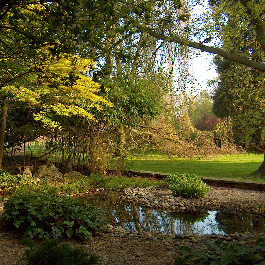 The Janpanese Garden at Waltham Place
