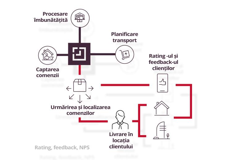 rating, feedback, NPS process