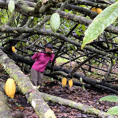 カカオの木の下にいる武田真由子