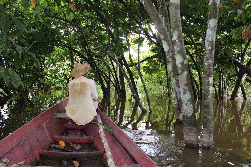 ジャングルの川の中を船で行く農家