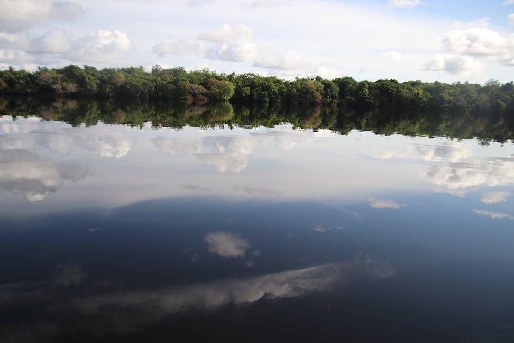 ジャングルの森と空を鏡面のように写したアマゾンの川
