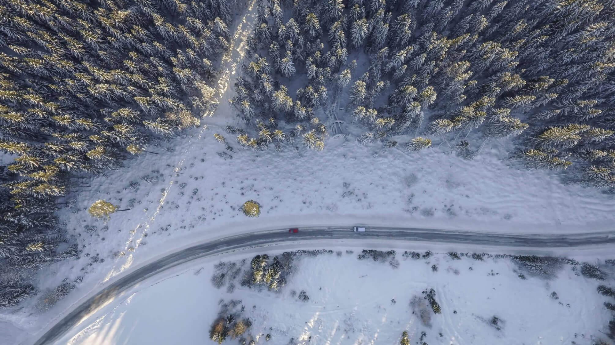 Streusalz auf Straße mit Schnee im Wald
