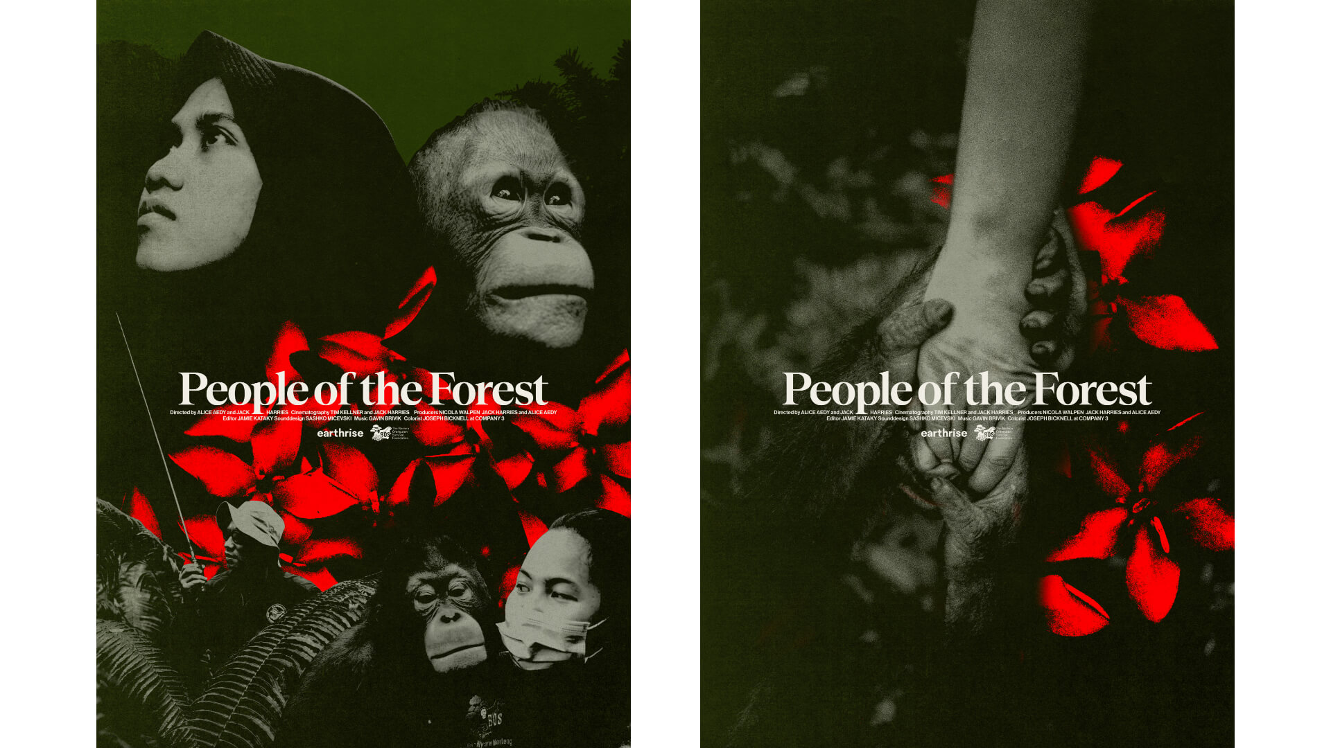 People of the Forest film posters