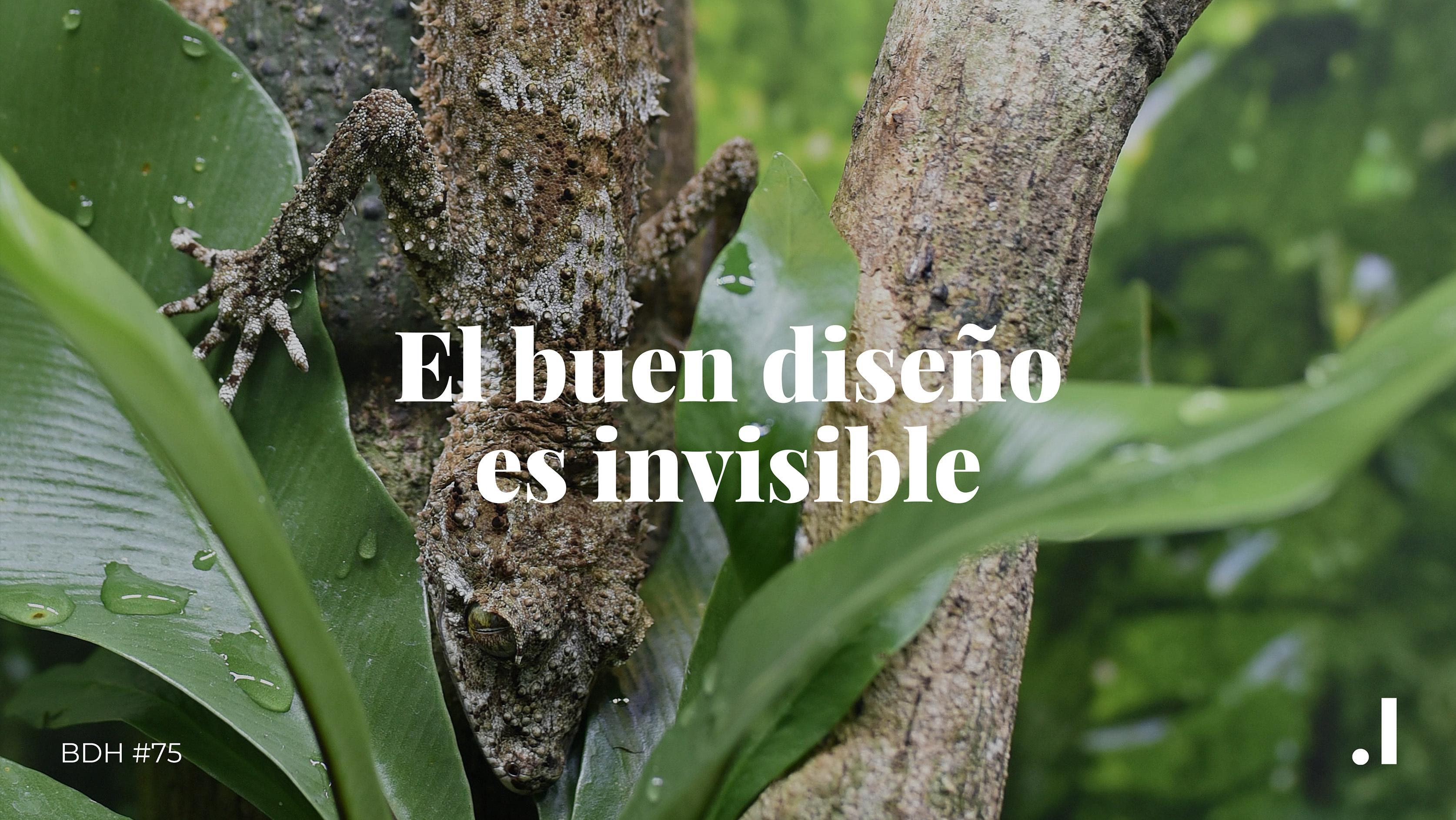 El buen diseño es invisible