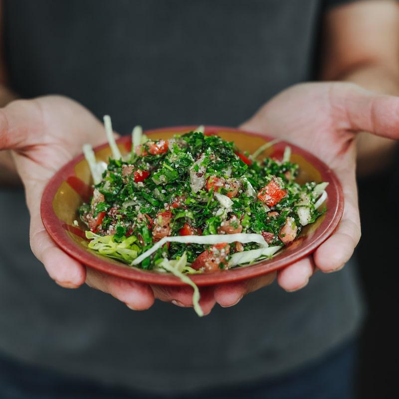 Repas dans les mains avec une assiette