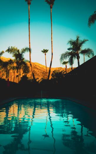 Enjoying SunDaze by the pool