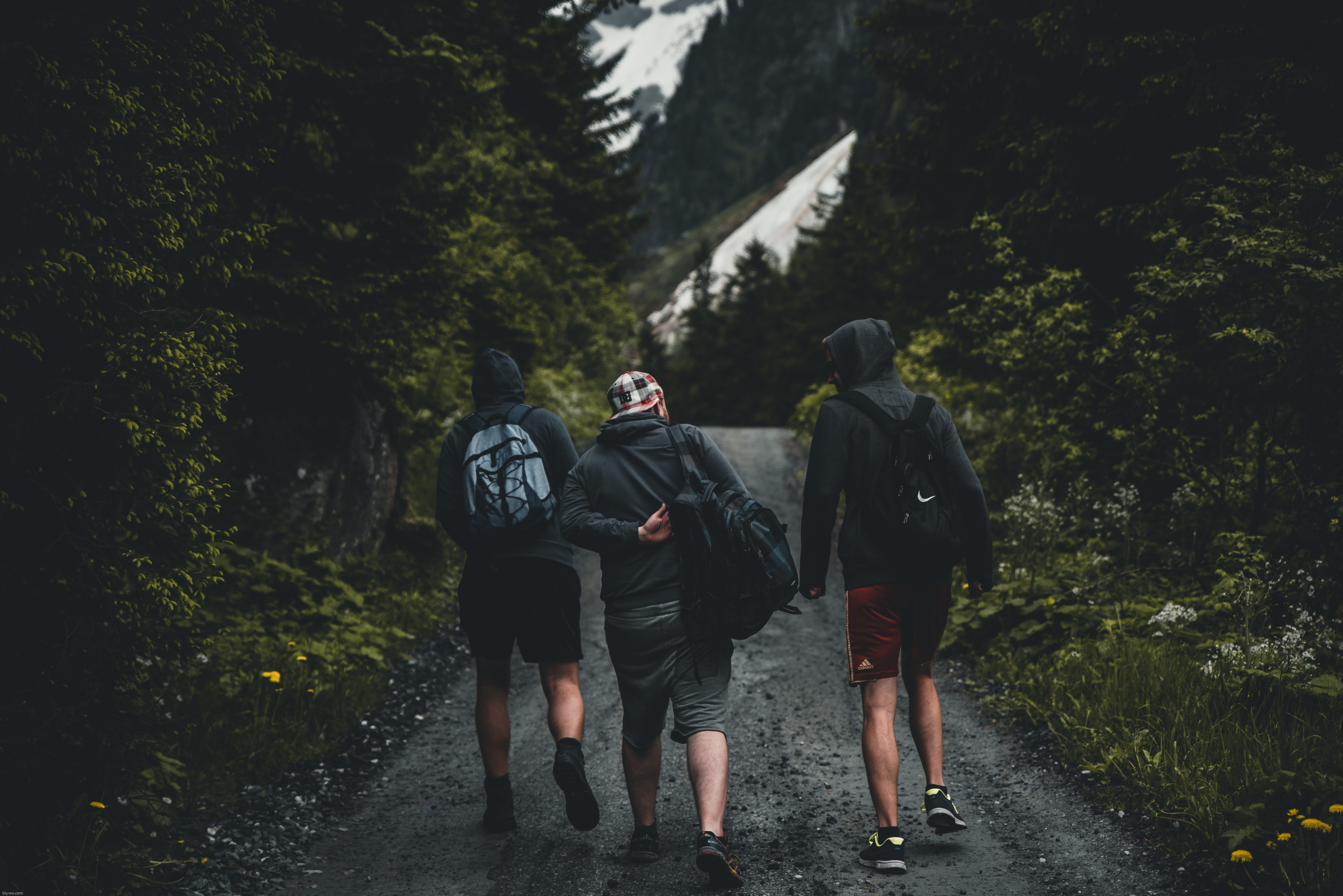 The backs of a group of three guys walking down a road.