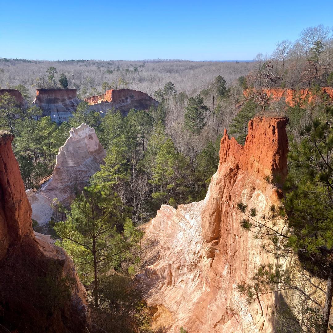 The Little Grand Canyon (Georgia).