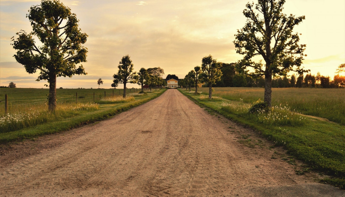 A Cowboy's Dirt Road to Healing Using Ozone Therapy